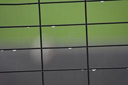降水確率90%の中でのプレイボール