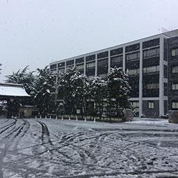 11月24日 「雪」