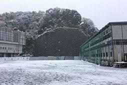 人工芝の第1グラウンドも雪化粧